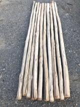 Palos redondos de 2.40 mts de diámetro 4/7 cm