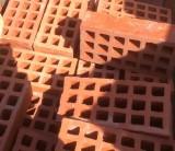Ladrillos rojos de agujeros recuperados de derribo. En perfecto estado. Miden 24,5x12x7 cm