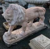 León de mármol rosa tallado en una pieza. Tamaño natural. Mide 1,75 cm de largo x 40 cm de ancho x 1,12 cm de alto