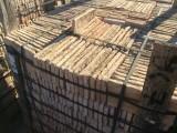 Ladrillo de suelo antiguo. Mide 25x12,5x2 cm. En stock hay 1906 Uds (2 palets) = 59,56 m2
