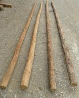 Palos redondos de 4 mts 60/80 diámetro. Se venden limpios o sucios.
