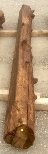 Viga de madera rústica de pino. Mide 26 cm de diámetro x 3.46 cm de altura
